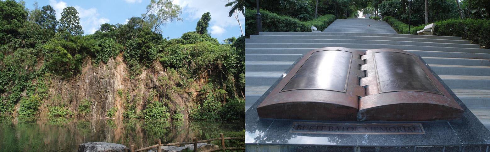 Pefect Ten - Bukit Batok Nature Park Singapore