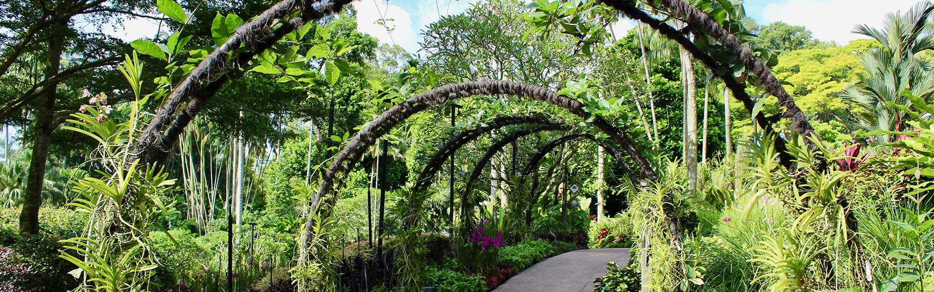 Pefect Ten - Botanic Gardens Banner